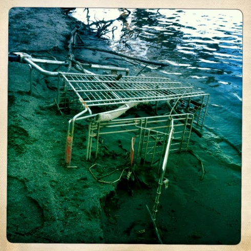 Discarded shopping cart that was most likely the carryall for one of the homeless who live along the river.  ©Tracy J. Thomas, 2012. All rights reserved.