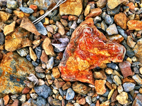 Rocks along the shoreline.  This one reminded me of a horse head.  ©Tracy J. Thomas, 2012. All rights reserved.