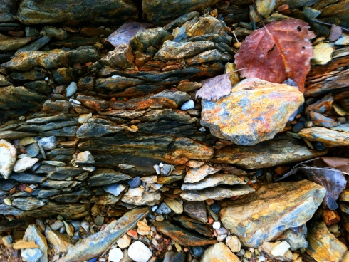 Leaves and colorful shale.  ©Tracy J. Thomas, 2012. All rights reserved.