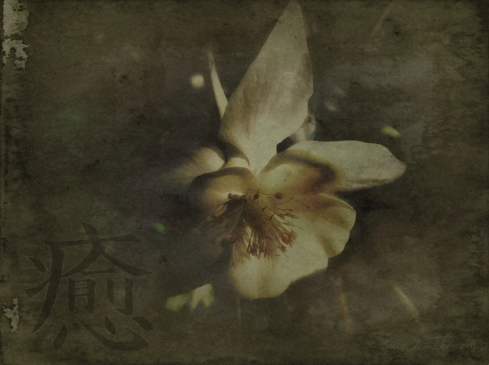 """""""Healing"""" - ©Tracy J. Thomas, 2013. All rights reserved."""