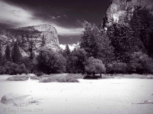 A very dry Mirror Lake. Yosemite National Park. ©Tracy J Thomas, 2014. All rights reserved.