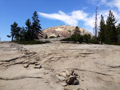 Sentinel Dome from below. Yosemite National Park. ©Tracy J Thomas, 2014. All rights reserved.